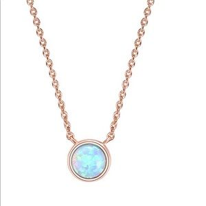 Jewelry - 14 K rose gold plated necklace round plated bezel